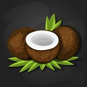 Coconuts With Various Coconut Dish Ideas And Benefits Such As Pina Colada Cocktail, Coconut Cake, Co poster