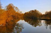 Der See mit roten Bäume ohne Blätter im Frühjahr In Aue Park In Fulda, Hessen, Deutschland
