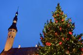Giant Xmas Fir Tree And Tower Of Town Hall In Winter On Tallinn, Estonia. The Biggest Living Christm poster