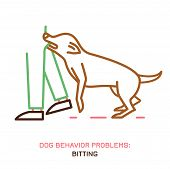 Dog Behavior Problem Icon. Domestic Animal Or Pet Language. Aggressive Dog. Bitting. Doggy Reaction. poster