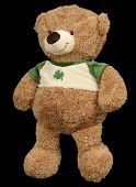 Toy Brown Soft Bear On A Black Background poster