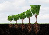 Growing Economic Success Business Growth As An Abstract Concept For Profit Graph Made With Plants Sh poster
