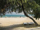 Odessa Beach Luzanovka, An Interesting View Through An Arch Of Trees. Sea, Sand, Vacationers poster