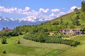 foto of snowy hill  - Rural houses on green hill and mountains with snowy peaks in Piedmont at spring - JPG