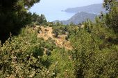 Footpath throught the Lycian way
