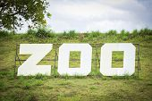 White Sign Of Zoo On Field Slope Hill / The Zoo poster
