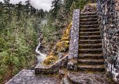 Stone Stairs In Forest Next To River
