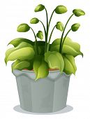 Illustration of a green plant in a gray pot on a white background