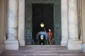 Papal Swiss Guard