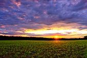Puesta de sol sobre las tierras de labrantío