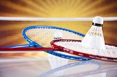 pic of shuttlecock  - Shuttlecock on badminton racket - JPG