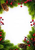 stock photo of berries  - christmas frame with fir and Holly berry on white paper background - JPG