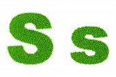 Grass letter S - ecology eco friendly concept character type