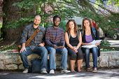Portrait of confident multiethnic university students sitting on parapet at campus