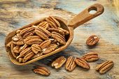 image of pecan nut  - pecan nuts in a rustic scoop against a grunge wood background - JPG