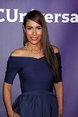 LAS VEGAS - APR 8:  Daniella Alonso at the NBCUniversal Summer Press Day at Huntington Langham Hotel