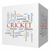 Cricket 3D Cube Word Cloud Concept