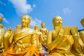 golden Buddha Bucha