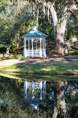 Reflection And White Gazebo Under Oak