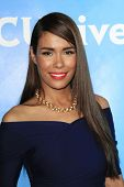 PASADENA - APR 8: Daniella Alonso at the NBC/Universal's 2014 Summer Press Day held at the Langham H