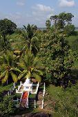 White Stupa And Green Trees