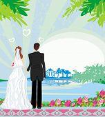 Honeymoon In The Tropics