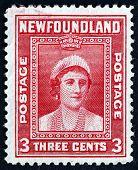 Postage Stamp Newfoundland 1938 Queen Elizabeth, Portrait