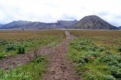 image of bromo  - Footpath in caldera to the volcano Bromo Indonesia - JPG