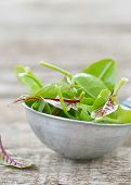 stock photo of sorrel  - fresh and organic green sorrel leaves on wooden table - JPG