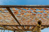 image of squid  - Squid lay on net Dried Squid traditional squids drying in the sun and blue sky in a idyllic fishermen village Thailand - JPG