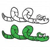 green snake cartoon isolated on white