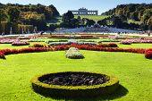 foto of schoenbrunn  - Garden in Vienna - JPG