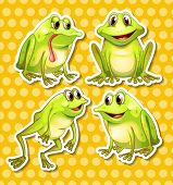 Illustration of frogs in different poses