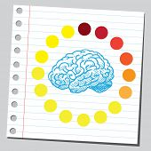 Brain loading process