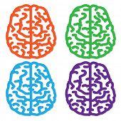 Colorful brain design