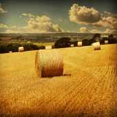 Grunge image of straw bales in the field.