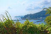 View Of Sagami Bay