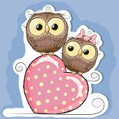 picture of owl eyes  - Two Cute Owls is sitting on a heart - JPG
