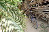 Stick Porch And Bicycle In Honduras Village