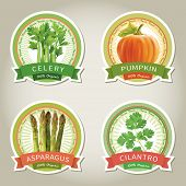 Set of vector labels with vegetables and herbs. Vector illustration.