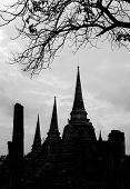 Black And White Of Wat Phra Sri Sanphet Temple