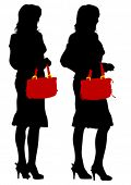 Young women in dress with bag on white background