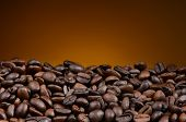 Closeup of fresh roasted coffee beans with a light to dark warm background. The beans fill the bottom of the frame, the top half is open for copy space.