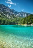 Grüner See With Crystal Clear Water In Austria