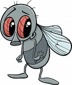 Cute Fly Cartoon Illustration