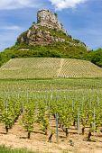 La Roche De Solutré With Vineyards, Burgundy, France
