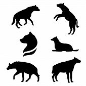 picture of animal silhouette  - Hyena set of black silhouettes - JPG