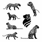 pic of animal silhouette  - Tiger with stripes - JPG