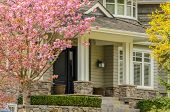 pic of brownstone  - A nice entrance of a luxury house over outdoor landscape - JPG