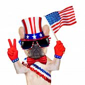 picture of uncle  - french bulldog waving a flag of usa on independence day on 4th of july isolated on white background - JPG